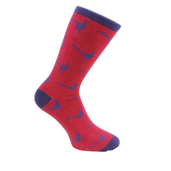 David Aster Mens cotton socks- Pheasants