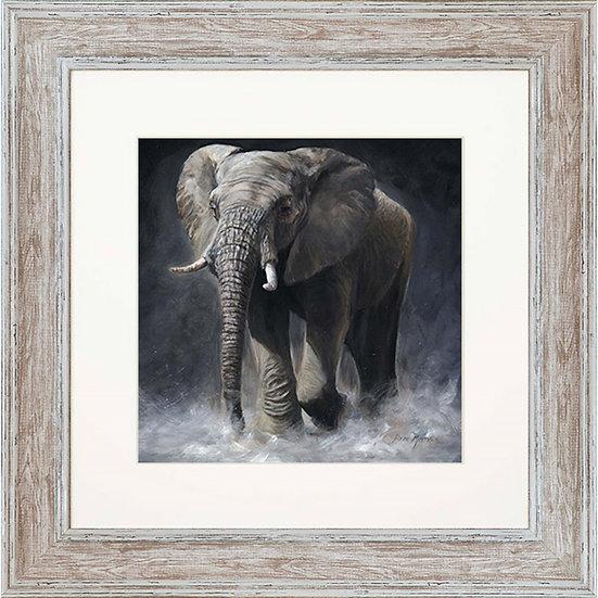 Ellie Elephant 48cm Square Framed Print