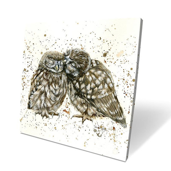 Posh & Pecks Owls 40cm Box Canvas