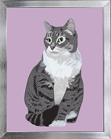 silver frame Lacey Grey.png