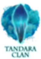 The Tandara clan's chosen shard of the ancient, sacred crystal of indie RPG Kristala