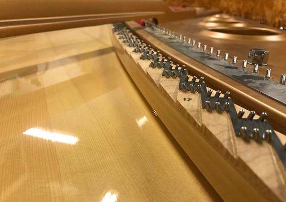 Fazioli Soundboard & Bridge