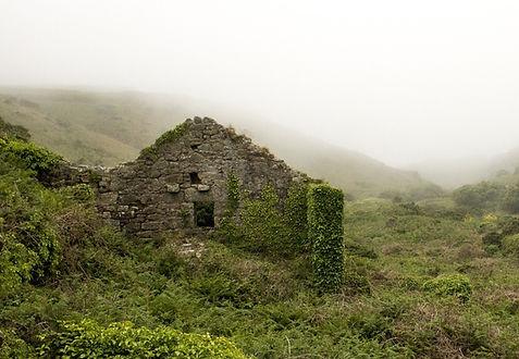 Ruine als Symbol für einen verborgenen Schatz|Krisenberatung|Heilpraktiker