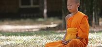 Meditation Homöopathische Praxis