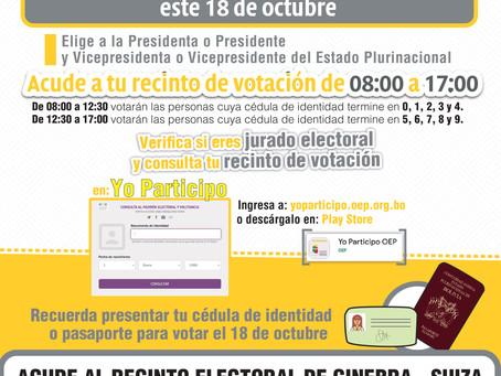 Elecciones Generales 2020, información para el electorado en Suiza