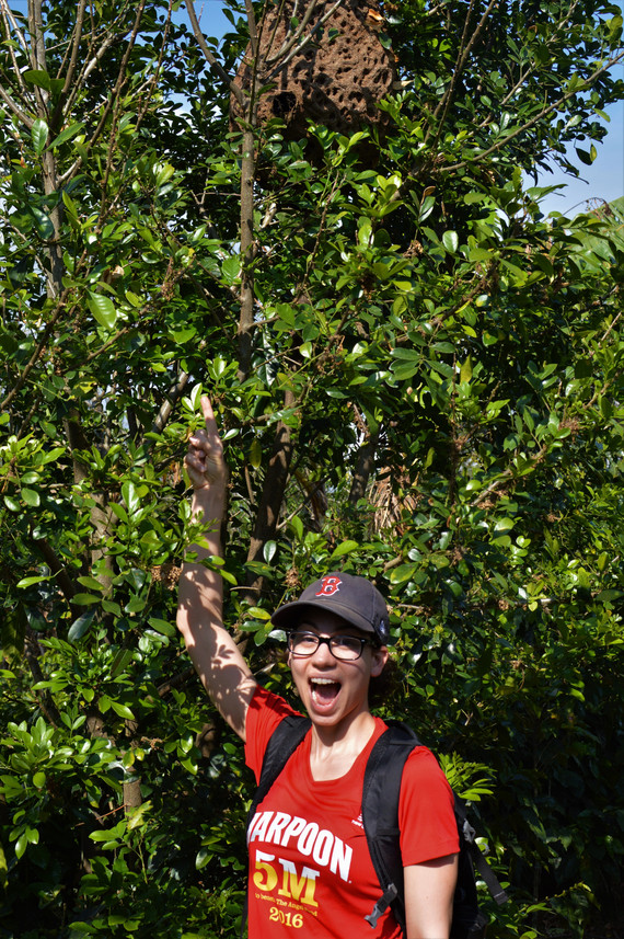 Faces of Fieldwork Feature