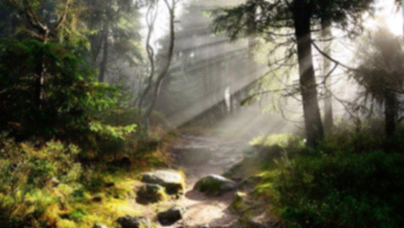 Wanderweg-Sonne.jpg