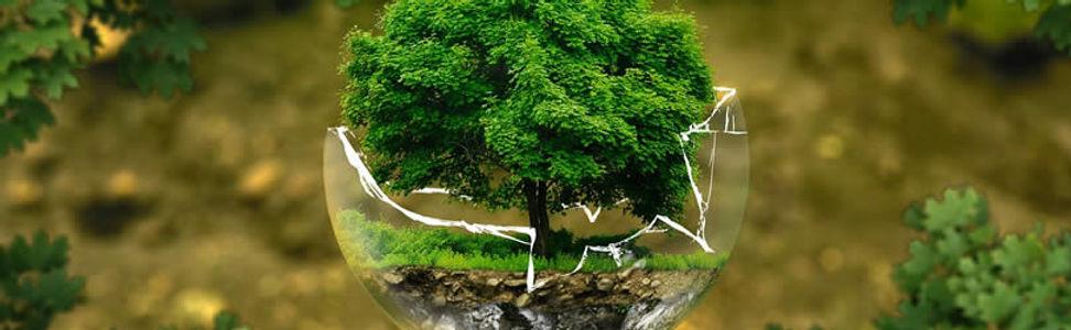 Naturschutz.jpg