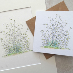 Rushes print and card