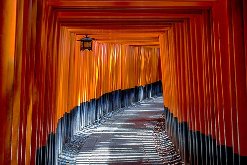 Camino Japones Zen