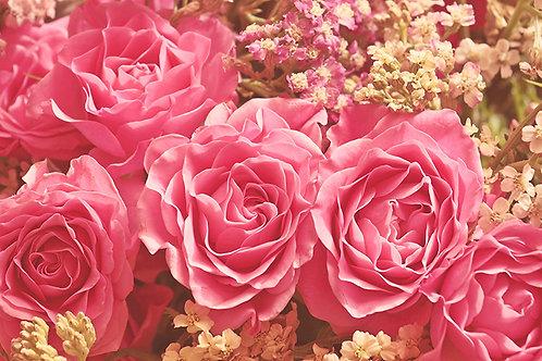 Fotomural rosas vintage