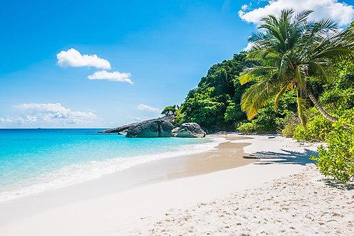 Fotomural playa con palmeras