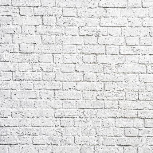 Ladrillos blancos kong