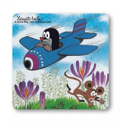 Der kleine Maulwurf, Flugzeug