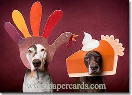 Happy Turkey Day !