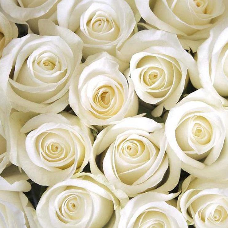 Sunflower-white-roses.jpg