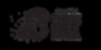 BSAF_Logo_Side copy.png