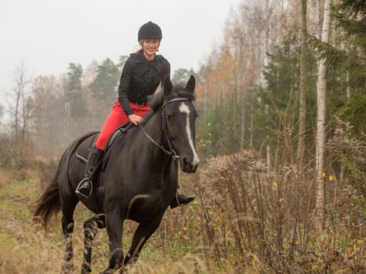 Par Latvijas zirgu šķirni