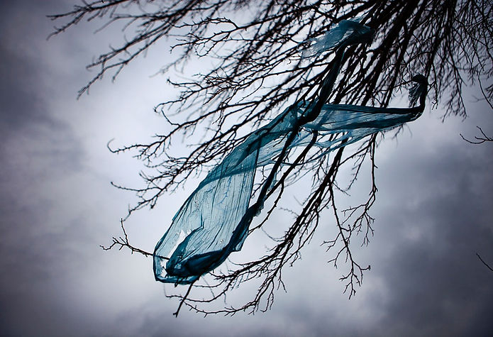 blue_bag.jpg