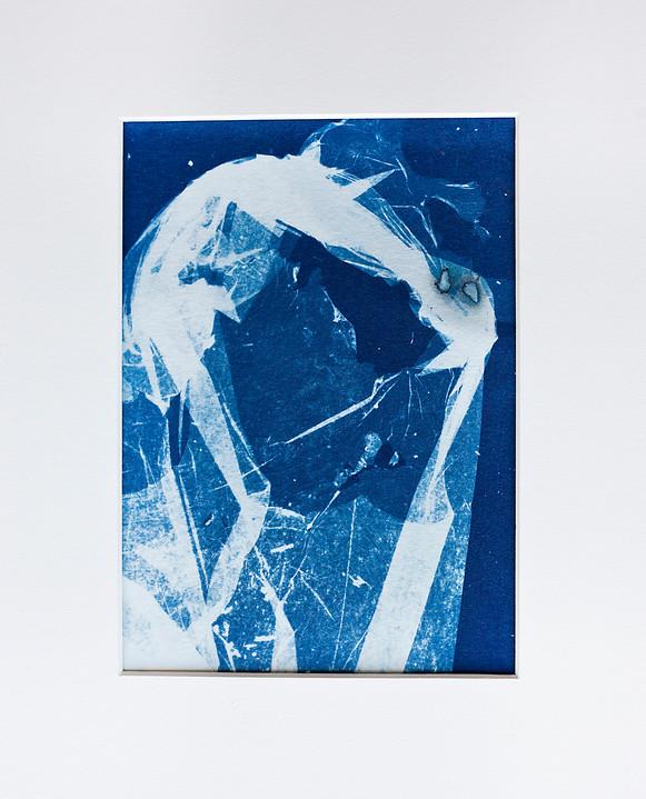 Plastic Shreads. 2019