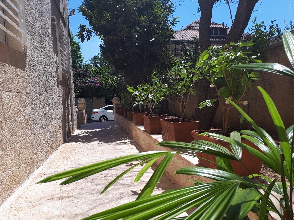 Levi - at home in jerusalem (13)