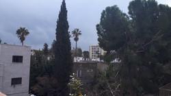 Yotam - at home in jerusalem (6)