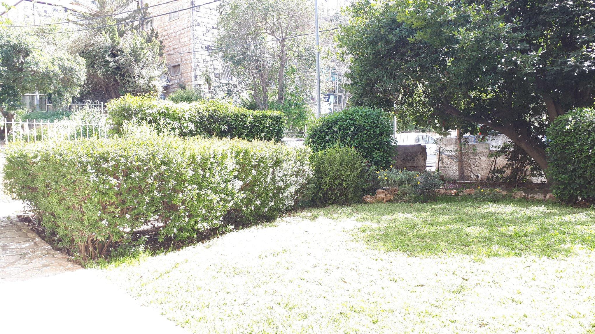 Kharlap - at home in jerusalem (10)