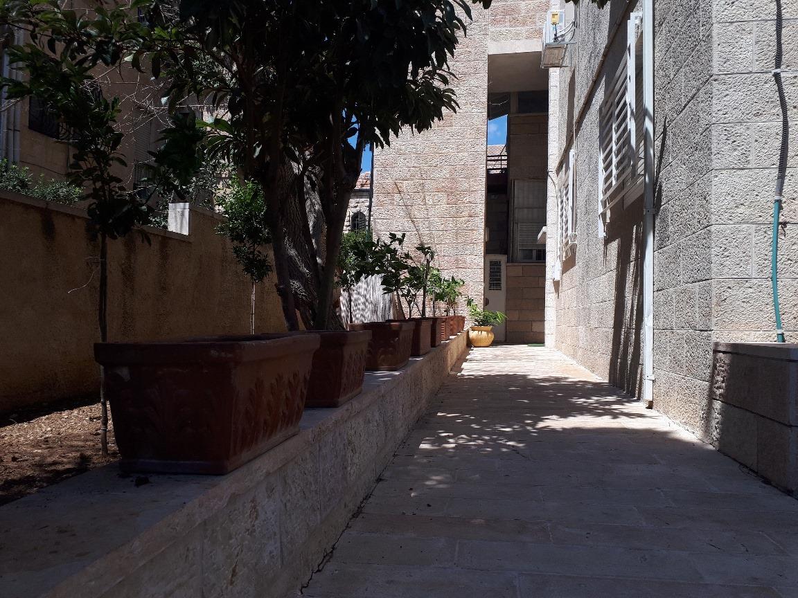 Levi - at home in jerusalem (11)
