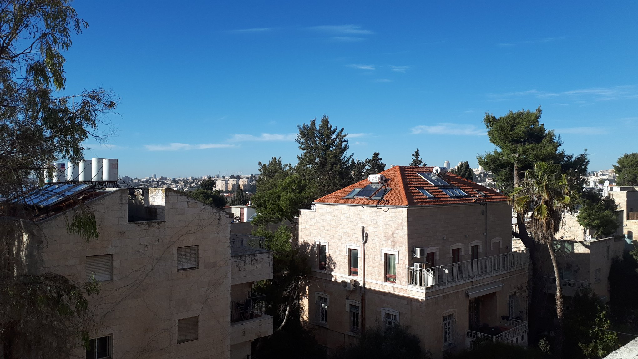 Mordekhai ha-Yehudi