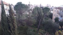 Dov Kimhi - at home in jerusalem (11)