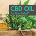 CBD Oil For Pain Relief: A Safe Alternative to Opioids