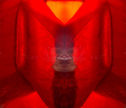 inari_Red
