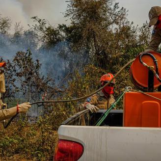 COMBATE AO FOGO:  Focos de incêndio no Pantanal mato-grossense reduzem em 80%; Governo continua com