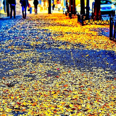 Street Legal  #streetphotography #sidewa