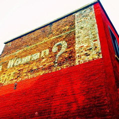 Hear Me Roar  #streetphotography #sign #