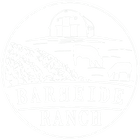 BHRlogo White Tbkgd.png