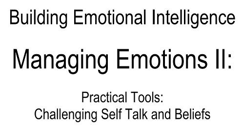0076 E-Book Managing Emotions II (Eng only)