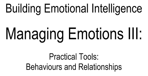 0077 E-Book Managing Emotions III (Eng only)