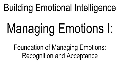 0075 E-Book Managing Emotions I (Eng only)