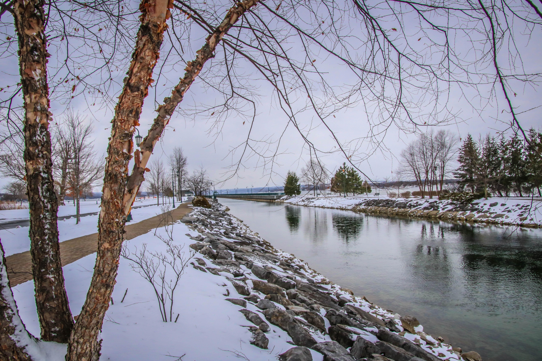 Owasco Inlet