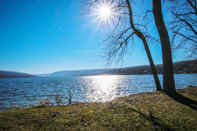 Focus on the Finger Lakes!