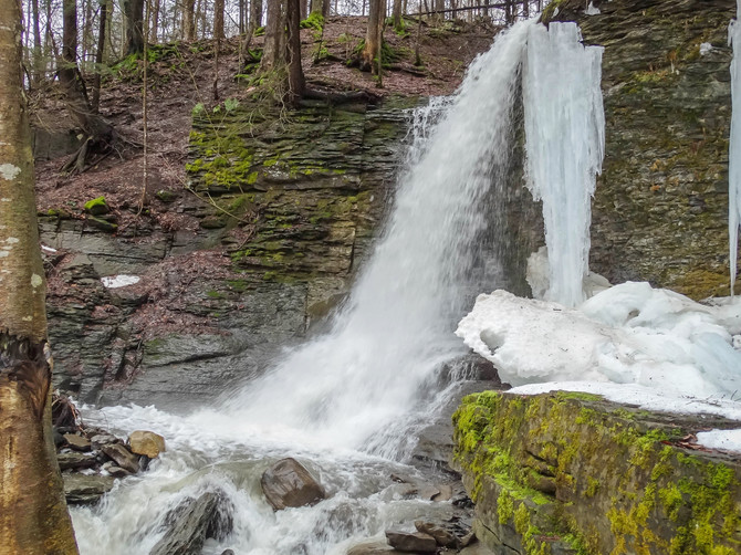 Focus on the Finger Lakes: Bucktail Falls