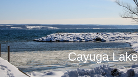 Day-tripping and More around Cayuga Lake