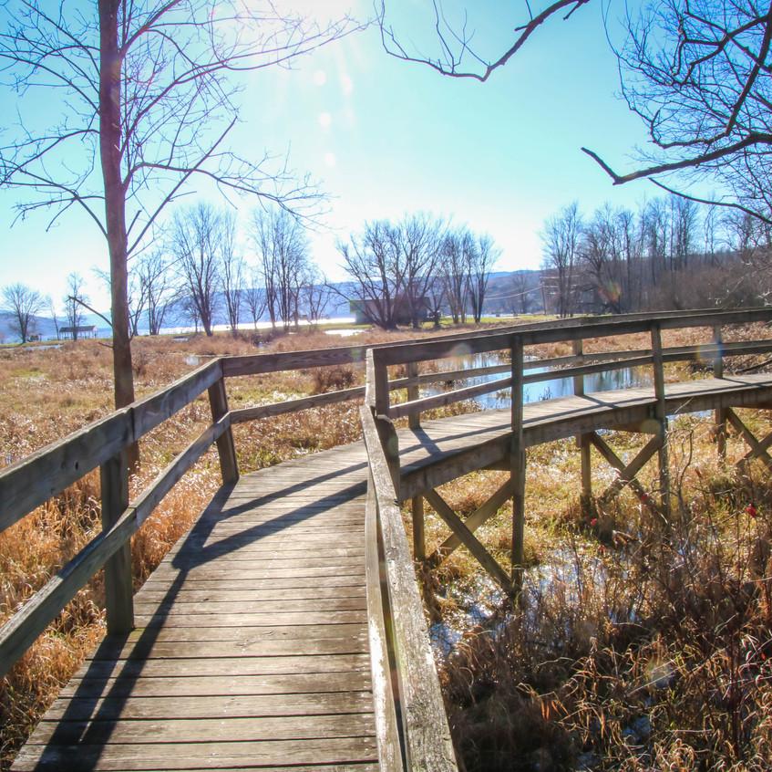 Sandy Bottom Nature Trail