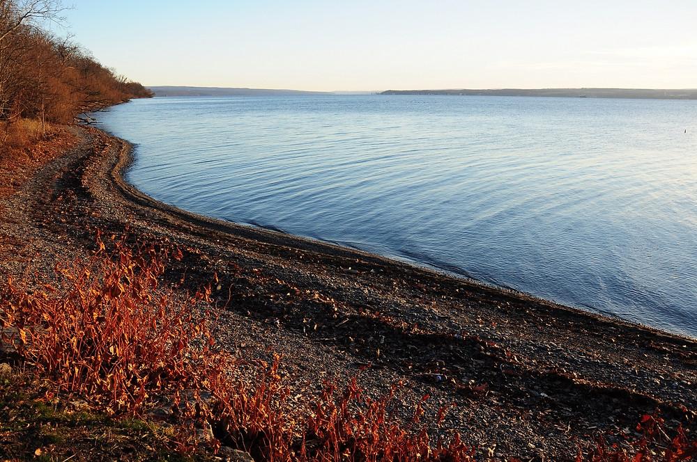 Seneca Lake shore by Nigel Peter Benson Kent