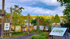 Ithaca Children's Garden