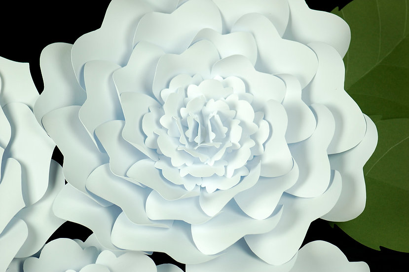 Big Paper Flowers Wall Decoration | Nursery | Wedding | White flower close up | Living Paper Gifts | NZ