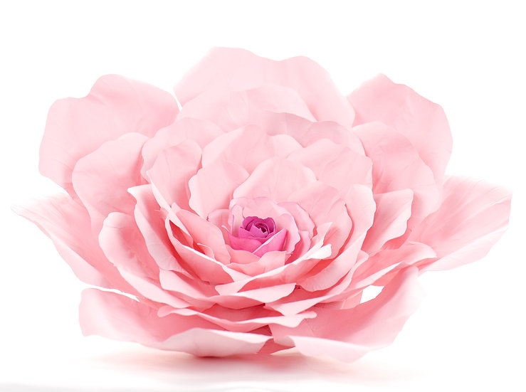 Giant Paper Rose Flower - Wall Decoration - Ombre