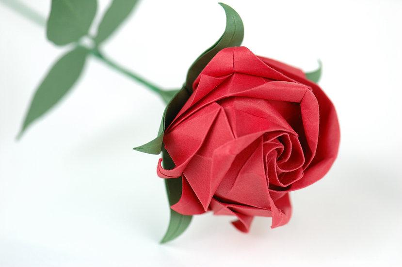 Handmade Origami Paper Rose   red   Wedding Anniversary Rose   ARZU ZIEGLER    NZ