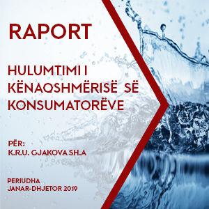6.Raporti final - KRU Gjakova - 2020.jpg